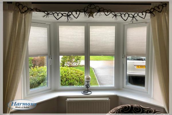 Dimout Perfect Fit Duette Blinds in a Bay Window