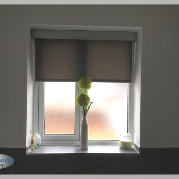 Small Senses Roller Blind in a Bathroom
